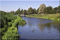TL4097 : River Nene (old course) by dennis smith