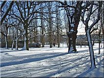 TQ3095 : Oakwood Park in Winter, London N14 by Christine Matthews