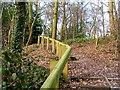 TQ0389 : A woodland walk near Denham Aerodrome by Wesley Trevor Johnston