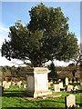 TG4700 : St Edmund's church - churchyard by Evelyn Simak