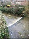 ST6834 : River Brue, Bruton by Maigheach-gheal