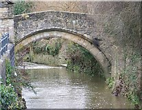 ST6834 : Packhorse bridge over the River Brue by Maigheach-gheal