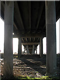 TM4599 : Underneath Haddiscoe Bridge by Evelyn Simak