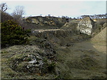 NZ3332 : Bishop Middleham Quarry (disused) by Harry Wilson