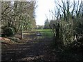 TR2951 : View through Garden Wood to Dane Court by Nick Smith