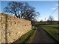 NZ0182 : Wall at Kirkharle Manor by Oliver Dixon