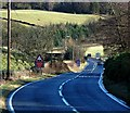 NO0001 : The A91 near Yetts o' Muckhart by Paul McIlroy