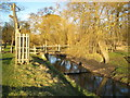 TQ2174 : Richmond Park: Beverley Brook by Nigel Cox