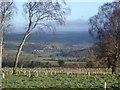 NY5045 : Armathwaite viewed from Blaze Fell Plantation by Jacob St John