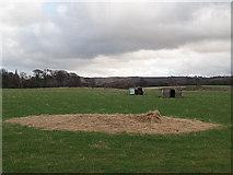 NZ5216 : Farmland near Ormesby Grange farm by Stephen McCulloch
