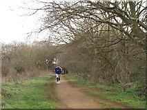 TQ1684 : Runner on Horsenden Hill by David Hawgood