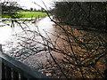 SO7626 : River Leadon in flood by Pauline E
