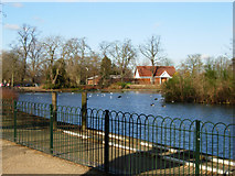 TQ3187 : Finsbury Park Boating Lake by Stephen McKay