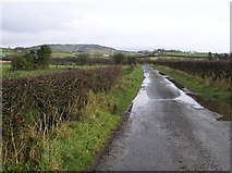 C3514 : Road at Kildrum Lower by Kenneth  Allen