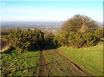TQ3112 : Bridleway to Underhill Lane by Simon Carey
