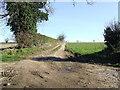 TF7912 : Farm track field boundary by Keith Evans