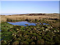 NY5208 : Tarn, above Brownhowe Gutter by Michael Graham