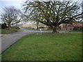 SE8960 : Village green and road junction at Fimber by Nicholas Mutton
