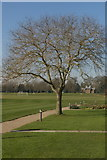 TL4359 : View across Churchill College playing fields by Fractal Angel