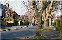 J3773 : Martinez Avenue, Belfast by Albert Bridge