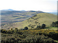 SJ3100 : Rorrington Hill from Castle Ring hill fort by Dave Croker