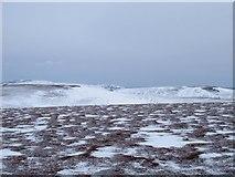 NJ2211 : Carn Ealasaid summit ridge by Patrick William McIvor