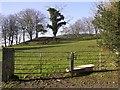 H2897 : Gortnagole Townland by Kenneth  Allen