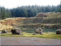 NY5083 : Old forest quarry at Burnt Shields by Oliver Dixon