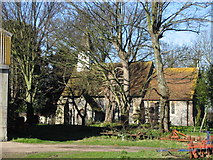 TR3254 : Ham church amongst the trees by Nick Smith