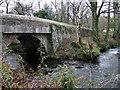SN0422 : Stepaside Bridge by ceridwen