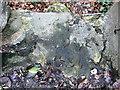 SN0422 : Workman's name by ceridwen