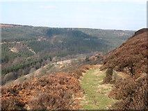 SE8394 : Path to Kidstye Farm by Gordon Hatton