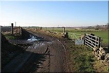 NT5675 : Mud on road by Richard Webb