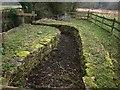 SP0204 : Sheepwash, Baunton by Derek Harper