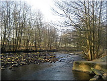 SD6650 : River Dunsop by Chris Heaton