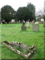 TL9499 : The church of St Peter & St Paul - churchyard by Evelyn Simak