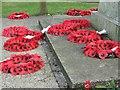 NZ3181 : Poppies by Christine Westerback