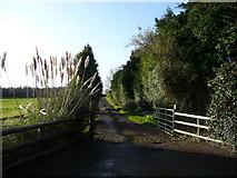 T1769 : Farm entrance at Ballyfad by Jonathan Billinger