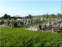 T1566 : Graveyard at Limerick, Co. Wexford by Jonathan Billinger