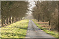 SE9746 : Lane's End near Holme-on-the-Wolds by Peter Church