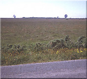 SW7320 : Lowland (Cornish) Heath at Goonhilly Downs by Trevor Rickard