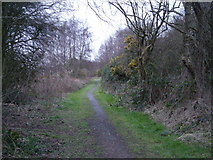 SJ6807 : Further along the footpath to Horsehay. by Row17