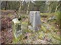 SK3062 : Farley Moor - Triangulation Pillar by Alan Heardman