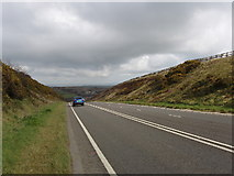 SX1691 : Road cutting on the A39 by David Hawgood