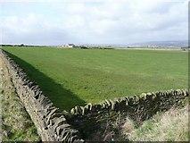 SE1220 : Field off Pinfold Lane, Fixby by Humphrey Bolton