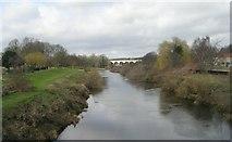 SE4843 : River Wharfe from Bridge Street by Betty Longbottom