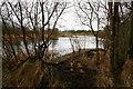 N4556 : McEvoy's Lake by kevin higgins