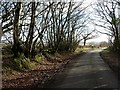 SX2586 : Lane on Tregeare Down by Derek Harper