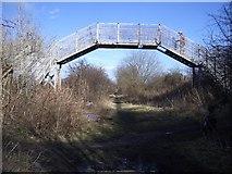 NT3271 : Railway footbridge by Callum Black