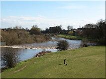 SE4843 : The River Wharfe by Gordon Hatton
